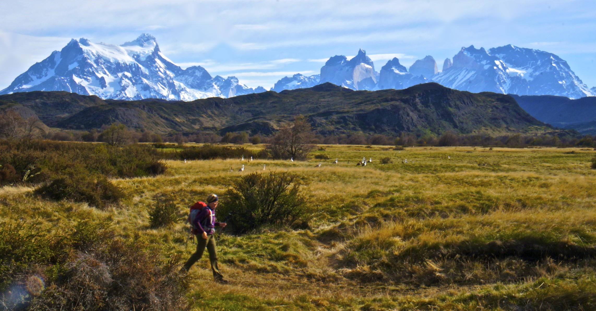 "Trekking the ""W""~Torres del Paine National Park, Patagonia"