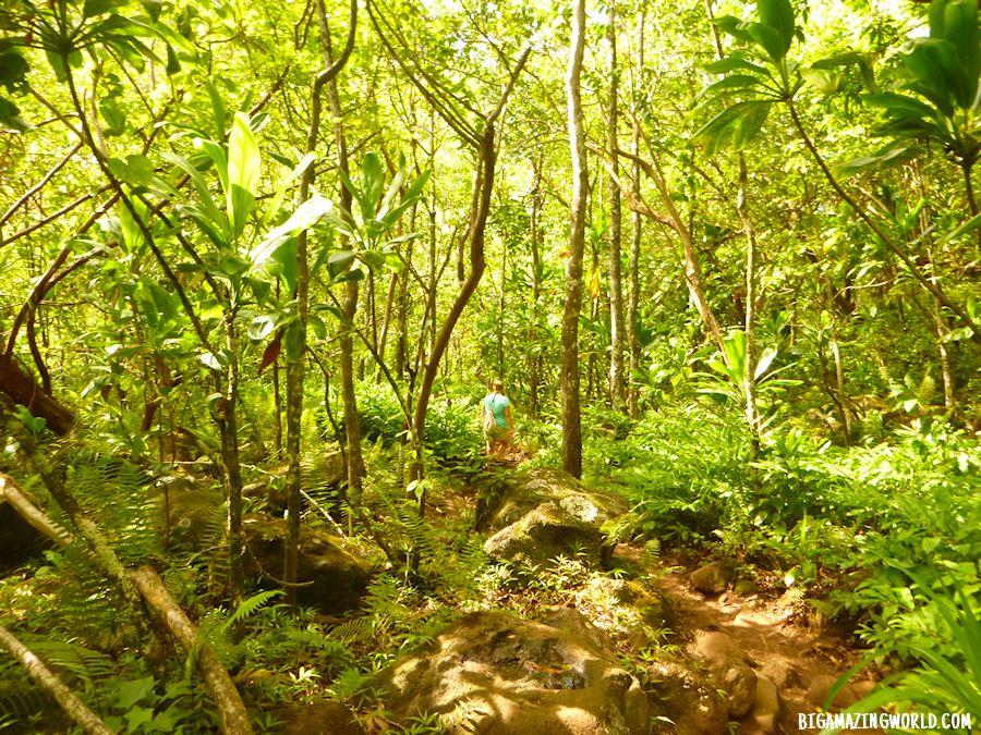 Na Pali Coast Kalalau Trail