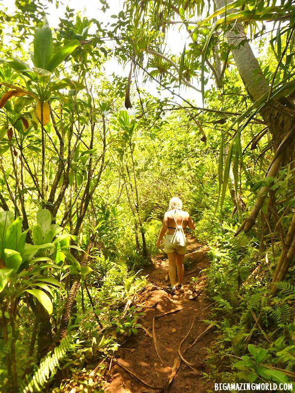 Napali Coast Kalalau Trail
